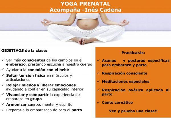 Yoga Prenatal para Embarazadas